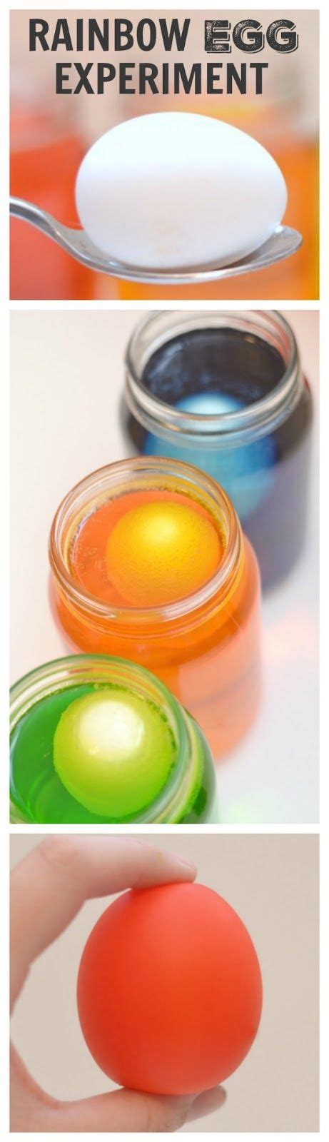 17 best ideas about egg experiments on kid 167 | 03f77334de0d368bac1b5af11bc282d6