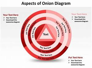 Aspects Of Onion Diagram Shown By Concentric Circles And