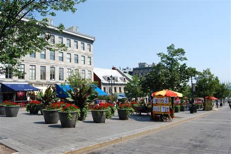 cartier si鑒e social place jacques cartier a montreal