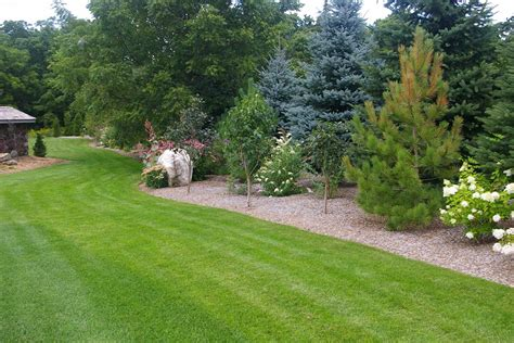 landscaping with trees ideas landscape 187 landscape design 187 tree mendus nursery