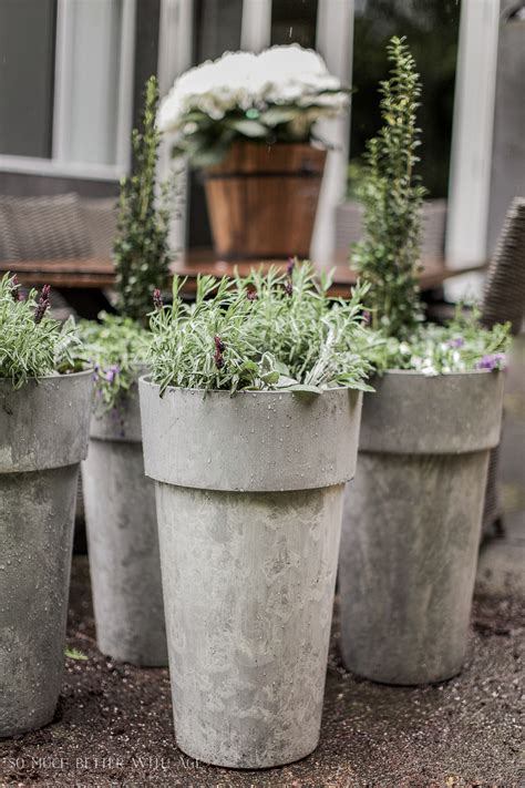 Outdoor Planters by The Best Tip For Filling Large Outdoor Planters So Much