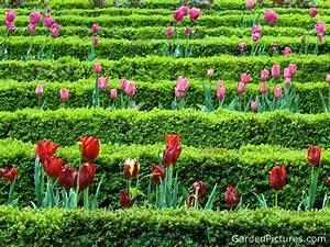 Nature Landscapes Other Flower Garden Garden Ideas Design ...