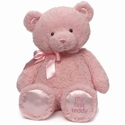 Teddy Pink 1st Gund Bear Flowers Karinsflorist