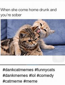 When She Come Home Drunk and You're Sober Dankcatmemes ...