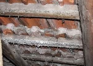 Dachsanierung Kosten Beispiele : schneider holzbau dachsanierung ~ Michelbontemps.com Haus und Dekorationen