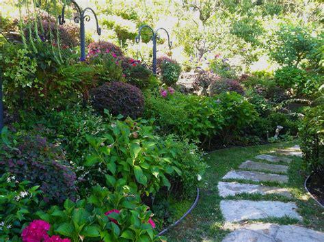 woodland gardening shade and woodland gardens archives magic gardens landscaping