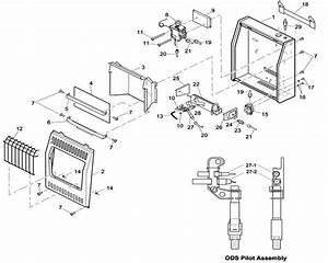 21 Desa Fireplace Parts  Desa Gas Fireplace Parts Diagram