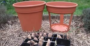 Période Pour Planter Les Pommes De Terre : dans un pot cultiver des pommes de terre ~ Melissatoandfro.com Idées de Décoration