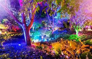 Enchanted, Garden