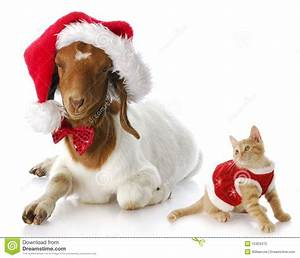 Goat Clipart Christmas Pencil And In Color Goat Clipart