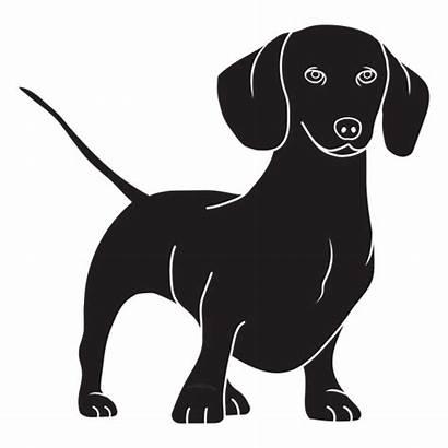 Dog Dachshund Stansing Salchicha Transparent Svg Cachorro