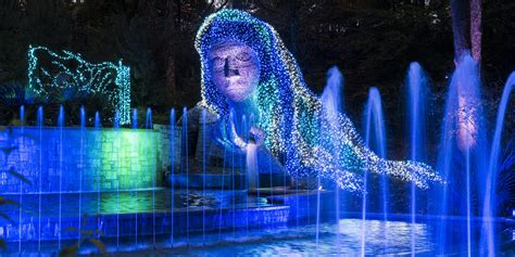 botanical gardens cristmas lights photos atlanta botanical garden transforms for the holidays 90 1 fm wabe