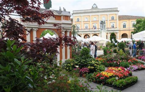 terrazzo fiorito tutto l anno terrazzi fioriti tutto l anno
