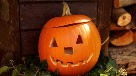 halloween kuerbis schnitzen zdfmediathek