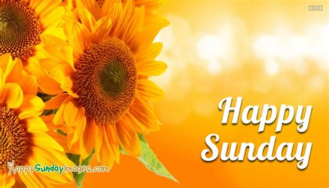 Happy Sunday Wallpapers by Happy Sunday Wallpaper Hd Happysundayimages