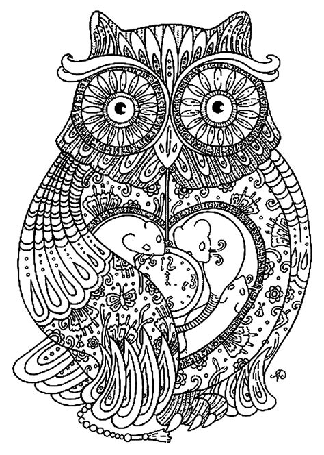 coloring page coloring adult big owl pretty owl full  details coloriage