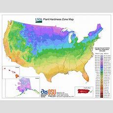 View Maps  Usda Plant Hardiness Zone Map