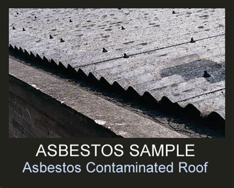 asbestos removal advice     professional