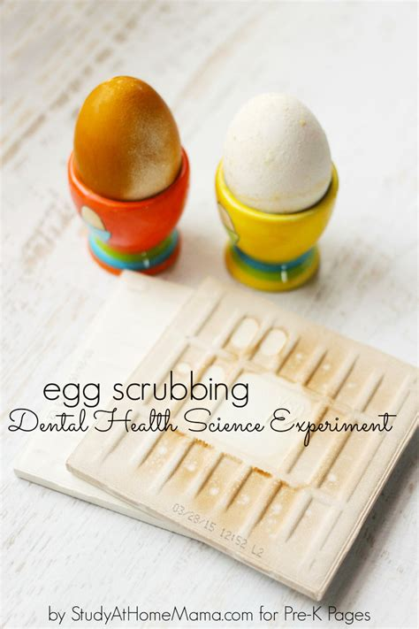 dental health science experiment pre k pages 770 | Egg Scrubbing PIN