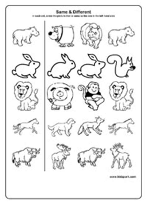 learning same and different worksheets pre school 998 | same different 4
