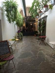 Foto de Miso di Riso, Florencia: Tillandsia ionantha, piante senza radici che vivono senza terra