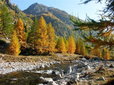 discover mercantour n 39 l park in the alpes mountains at
