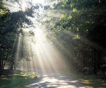 walking in the light walking in the light wholehearted