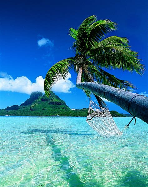 world visits bora bora island paradise the earth magical honeymoon distination