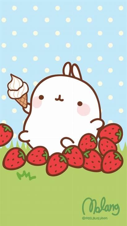 Kawaii Molang Iphone Strawberry Wallpapers Screen Lock