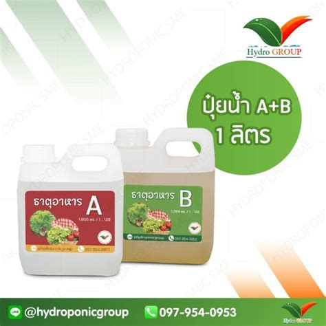 ปุ๋ยน้ำ AB เข้มข้น 1 ลิตร - จำหน่าย อุปกรณ์ปลูกผัก ไฮโดร ...