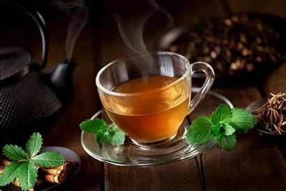Tea Cup Kettle Saucer Mint Sacha Inchi