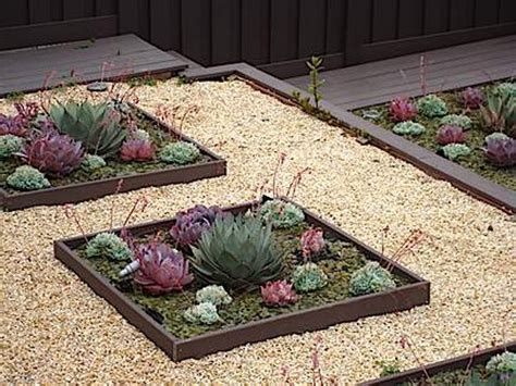 succulent flower bed 70 indoor and outdoor succulent garden ideas shelterness