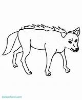 Coyote Coloring Coyotes Phoenix Template Howling Wiley Popular Spurs Coloringhome sketch template