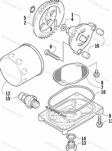 Arctic Cat Atv 2006 Oem Parts Diagram For Oil Filter  Pump