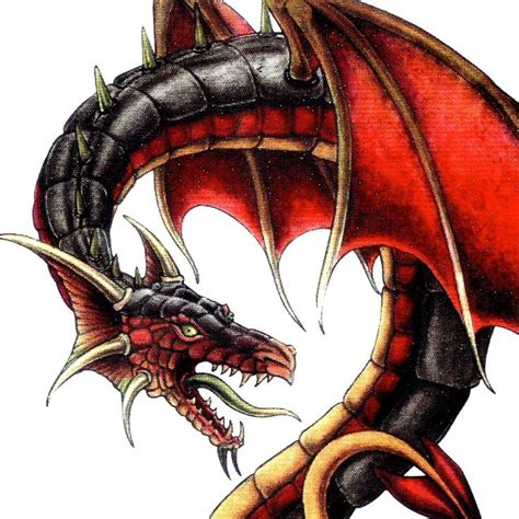 drawing tattoo dragon black  red images