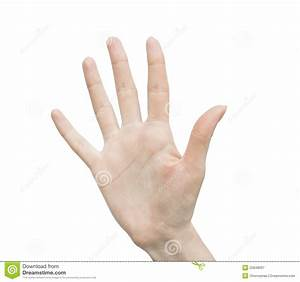 Woman Hand (palm) Royalty Free Stock Photography - Image ...