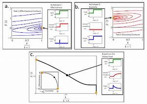 Synthetic Daisies: Evolutionary Models from the Reading Queue