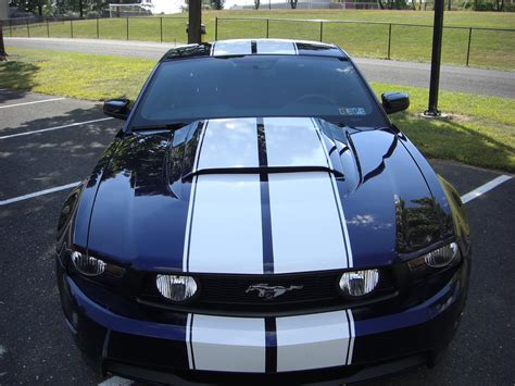 Racing Stripes Wallpapers Movie Hq Racing Stripes