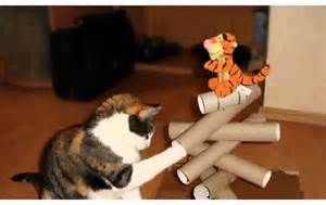 wandgestaltung ideen selber machen katzenspielzeug selber machen ideen