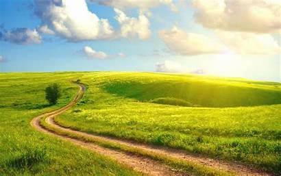 Field Grass Road Summer Sun Country Wallhere