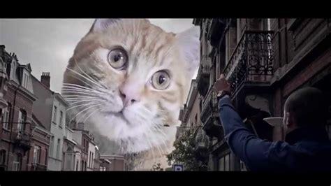 catzilla trailer parody  godzilla hd youtube