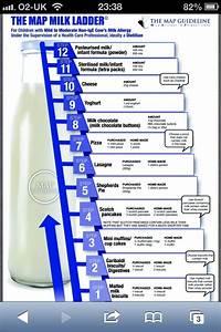 The Milk Ladder Milk Ladder Milk Allergy Cows Milk Allergy