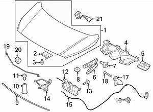 2017 Ford Escape Hood Bumper  Stopper  Front  On Body Front  On Body Front To 11  09  12