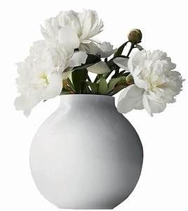 Vase with White Peonies PNG Clipart Picture | Gallery ...