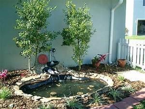 Jardin Avec Bassin : installer un bassin de jardin les conseils de base ~ Melissatoandfro.com Idées de Décoration