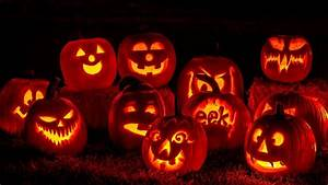 Top, 5, Intricate, Jack-o, U0026, 39, -lantern, Patterns, That, Are, Actually, Easy, To, Carve