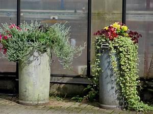 Blumenkübel Bepflanzen Sommer : alte milchkannen bepflanzen garten anders ungew hnlich m lltonnen als pflanzk bel garten u ~ Eleganceandgraceweddings.com Haus und Dekorationen