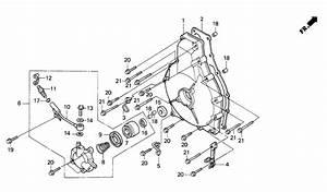 1987 Honda Shadow Ignition Wiring  Honda  Wiring Diagram