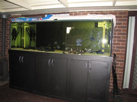 aquarium for sale cheap selling cheap fish tank for sale in singapore adpost classifieds
