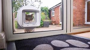 Katzenklappe Für Fenster : mikrochip dualscan katzenklappe sureflap ~ Eleganceandgraceweddings.com Haus und Dekorationen